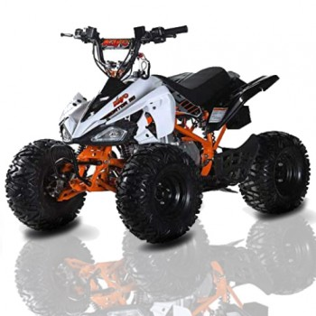 MOTO4 IMR QUAD ATV 110cc AUTO. C/MARCHA TRAS 21