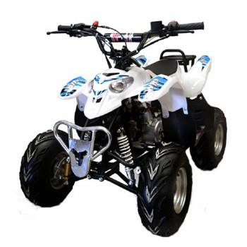 MOTO4 IMR WR1 QUAD ATV 110cc